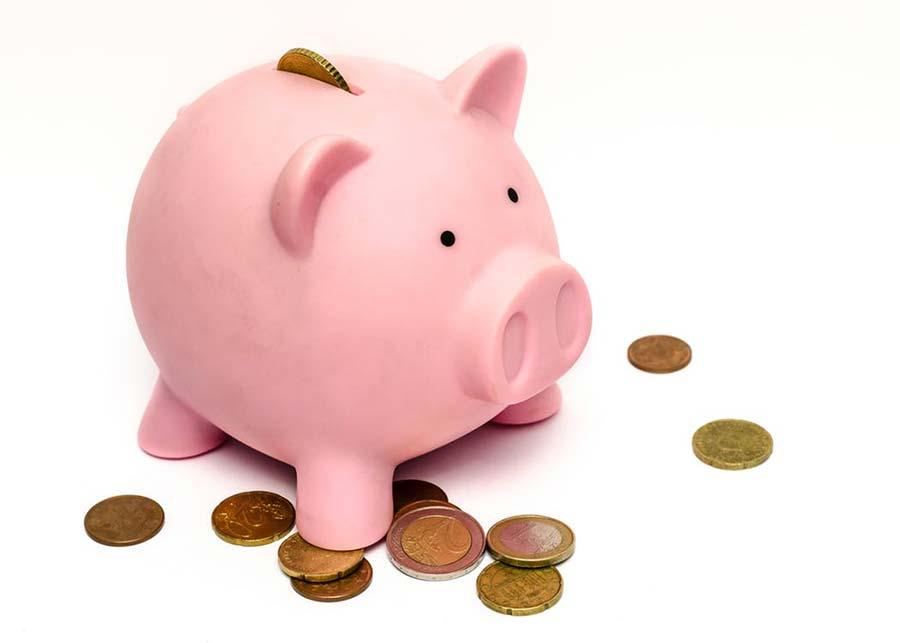 oszczędzania świnka